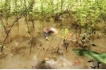 Vụ vứt xác người xuống suối: Điều tra từ dấu vết bánh xe máy