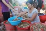 Bài thuốc đánh tan sỏi thận, cứu người suy thận của lang y người Thái