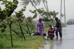 Clip: Người Đà Nẵng chạy bão trong gió giật, mưa lớn