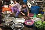 Cá chết miền Trung, chợ hải sản Hà Nội cũng điêu đứng