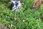 Xe khách lấn làn xe máy trên đèo Bảo Lộc, 2 vợ chồng rơi xuống vực sâu