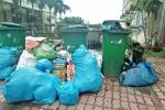 Rác thải ùn ứ bủa vây nhiều nơi ở Quảng Ngãi