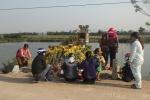 'Rắn thần' bị bắt đi, dân Quảng Bình vẫn kéo đến mộ vô danh thắp hương