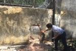 Bộ trưởng Đào Ngọc Dung: Muốn 'sạch' địa bàn, địa phương đưa hết người nghiện vào trung tâm