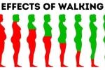 10 điều sẽ thay đổi cơ thể của bạn chỉ với 30 phút đi bộ mỗi ngày