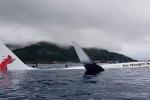 Máy bay chở 47 hành khách trượt khỏi đường băng, lao xuống biển