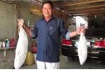 Dân Khánh Hòa câu được cặp cá sủ vàng bạc tỷ