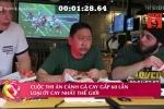 'Xoắn lưỡi' với cuộc thi ăn cánh gà cay gấp 60 lần loại ớt cay nhất thế giới