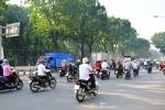 Sắp đốn hạ di dời 123 cây xanh để mở đường giảm kẹt xe ở Tân Sơn Nhất