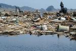 Hài cốt của nạn nhân sóng thần sẽ xuất hiện ở Mỹ