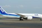 Máy bay Nhật bị sét đánh hạ cánh xuống Nội Bài: Hành khách vẫn an toàn
