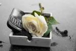 BlackBerry công bố 'khai tử' mảng sản xuất điện thoại