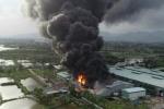 Cháy lớn công ty nhựa thông ở Quảng Ninh làm thiệt hại khoảng 12 tỷ đồng