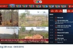 VTV24 tuyên bố phát sóng lại loạt phóng sự phá rừng ở Đắk Lắk