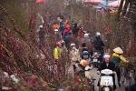 Dự báo thời tiết ngày 10/2: Dân miền Bắc xuống đường sắm Tết cần biết thông tin này