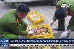 Lạng Sơn: Bắt giữ gần 7.000 con gia cầm giống nhập lậu từ Trung Quốc