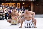 Vạn người nô nức mừng sumo Nhật nhận danh hiệu 'Thiên hạ vô song'