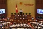 VIDEO trực tiếp: Quốc hội bàn về quản lý, sử dụng vốn nhà nước tại doanh nghiệp