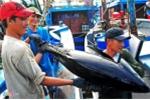 Phó Thủ tướng Vương Đình Huệ mong EU sớm gỡ bỏ 'thẻ vàng' cho thủy hải sản Việt Nam
