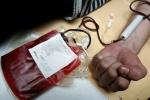 Dòng họ 18 năm hiến máu cứu người