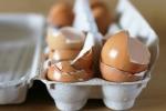 Hàng trăm triệu tấn vỏ trứng bị vứt bỏ mỗi năm, bạn nên dừng việc làm lãng phí này lại