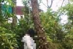 Khai quật tử thi, điều tra nguyên nhân cái chết của nữ kế toán trưởng bệnh viện ở Nghệ An