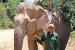 Chuyện chưa biết về 'trung úy' voi bị tử hình vì giết người, phá máy