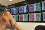Vì sao thị trường chứng khoán Việt Nam bất ngờ 'sập sàn'?