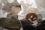 Video: Nhà khoa học tiếp cận 'bé gái gây cháy'