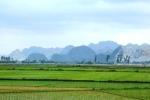 Miễn thuế sử dụng đất nông nghiệp đến 2020