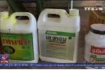 Bắt quả tang cơ sở nhúng hóa chất ép chín sầu riêng ở Lâm Đồng