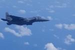 Chiến đấu cơ Singapore hộ tống máy bay quay đầu vì khách dọa có bom