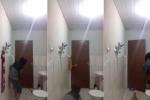 Thanh niên 'song kiếm hợp bích' với mèo cưng bắt chuột và cái kết hài té ghế