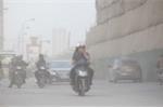 Bụi mịn PM2.5 nhỏ hơn sợi tóc người 30 lần đến từ đâu?