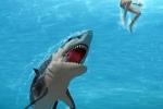 Clip: Cá mập trắng tấn công nhóm thợ lặn ngoài khơi Australia