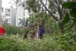 Hành trình 24 giờ truy bắt hung thủ sát hại dã man sinh viên, phi tang xác trong bụi chuối ở Hà Nội