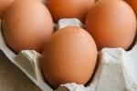 9 thực phẩm tuyệt đối không được cho vào tủ đông