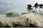 Tin mới nhất: Bão số 12 có thể mạnh cấp 11, gió giật hơn 100 km/h trước khi đổ bộ
