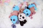 Bệnh viện Thái Lan cho các bé sơ sinh mặc đồ cún khi chào đời trong năm Mậu Tuất