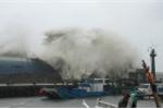 Chuyên gia thời tiết lý giải nguyên nhân bão số 12 càng vào đất liền càng mạnh