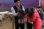 Video: Xem gà Đông Tảo nuôi bằng thịt bò, bán giá hàng chục triệu đồng trước Tết