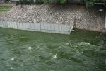 Lại xả nước hồ Tây vào sông Tô Lịch: Công ty Thoát nước Hà Nội giải thích nguyên nhân