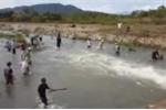 Clip: Dân Bình Thuận đổ xô bắt cá bay từng đàn như trong phim