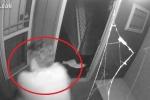 Clip: Đột nhập nhà dân, hứng đạn từ nữ chủ nhà phải chạy trối chết
