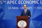 Thành công của năm APEC 2017 và Tuần lễ Cấp cao APEC với vai trò và vị thế của Việt Nam