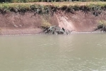 Đề nghị công nhận liệt sĩ công an hy sinh khi tìm người mất tích dưới kênh ở Tây Ninh