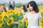 Ảnh, video: Thiếu nữ quê lúa đua sắc bên cánh đồng hoa hướng dương tuyệt đẹp