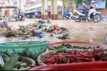 Bảo đảm an toàn thực phẩm trong mùa mưa, bão năm 2017