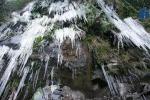 Video: Cận cảnh cây cỏ đóng băng đẹp kỳ vĩ trên đỉnh Phia Oắc, Cao Bằng