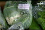 Cách chọn rau hữu cơ an toàn